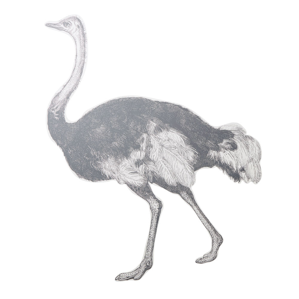 Black-and-White-Ostrich-Printed-Vinyl-Wall-Sticker_23136325457
